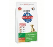 Hill's Science Plan Canine Puppy Healthy Development Large Breed cu pui 2,5 kg